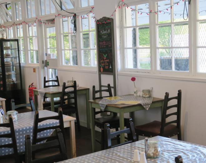 Spotlight on Dandelion Café