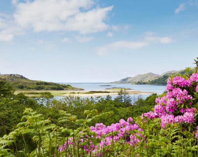 Our favourite find: Eilean Shona