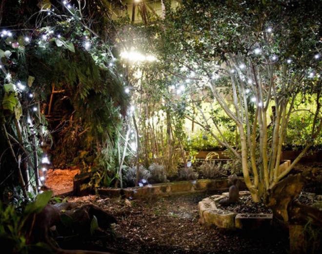 Green Santa at the Secret Herb Garden