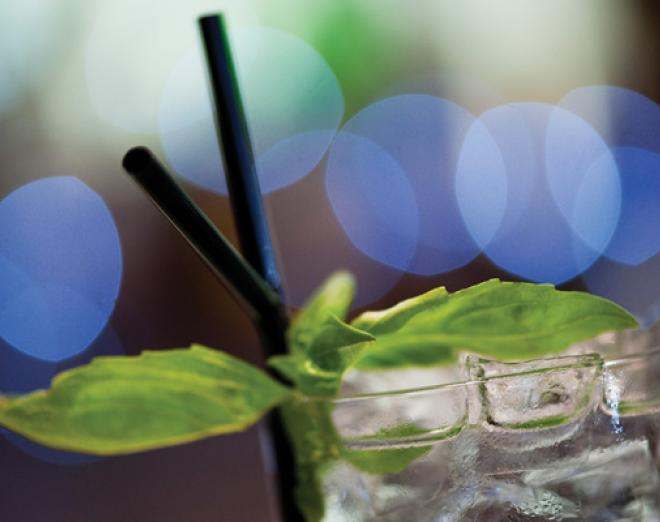 The gin renaissance shaking up the drinks world